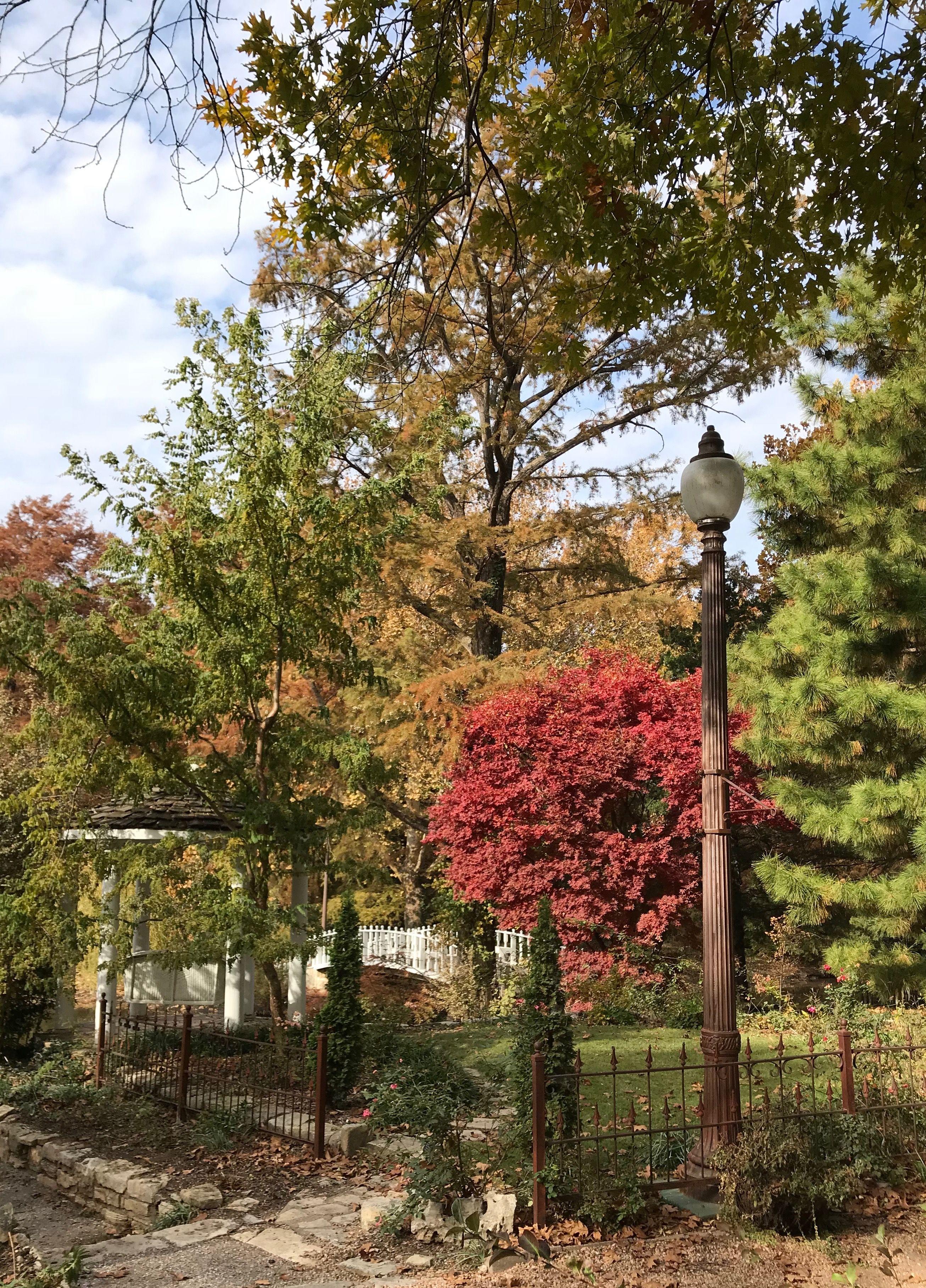 Bartlett Arboretum - Photo by CS Lent | Bartlett Arboretum Belle ...