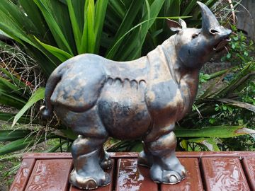 Google Image Result for http://www.waikatopotters.co.nz/activities/Fiona%2520Rhino.jpg