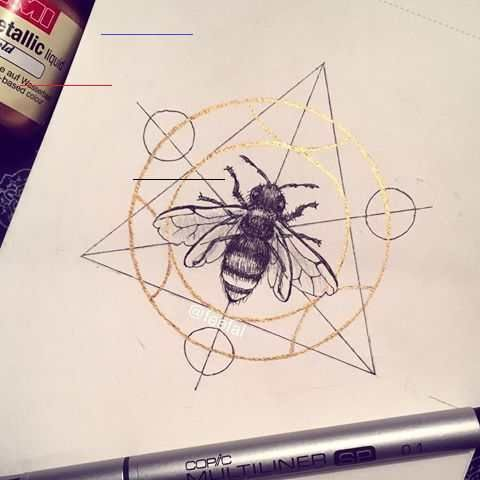 "Linnea on Instagram: ""#inktober day 25. A bee in a transmutation circle! Because I love bees and I love Fullmetal Alchemist🐝 #savethebees . . . . . . . #drawing…"" #inktober day 25. A bee in a transmutation circle! Because I love bees and I love Fullmetal Alchemist #savethebees . . . . . . . #drawing #bee #illustration #inktober2016 #sketch #ink #fineliner #bug #dailydrawing #dailysketch #dailyart #traditionalart #copic #gold #goldpaint #illustrations<br>"