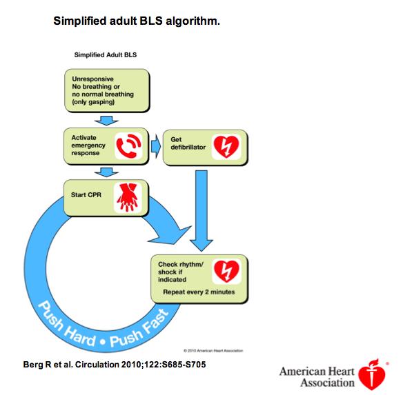 basic life support algorithm pdf