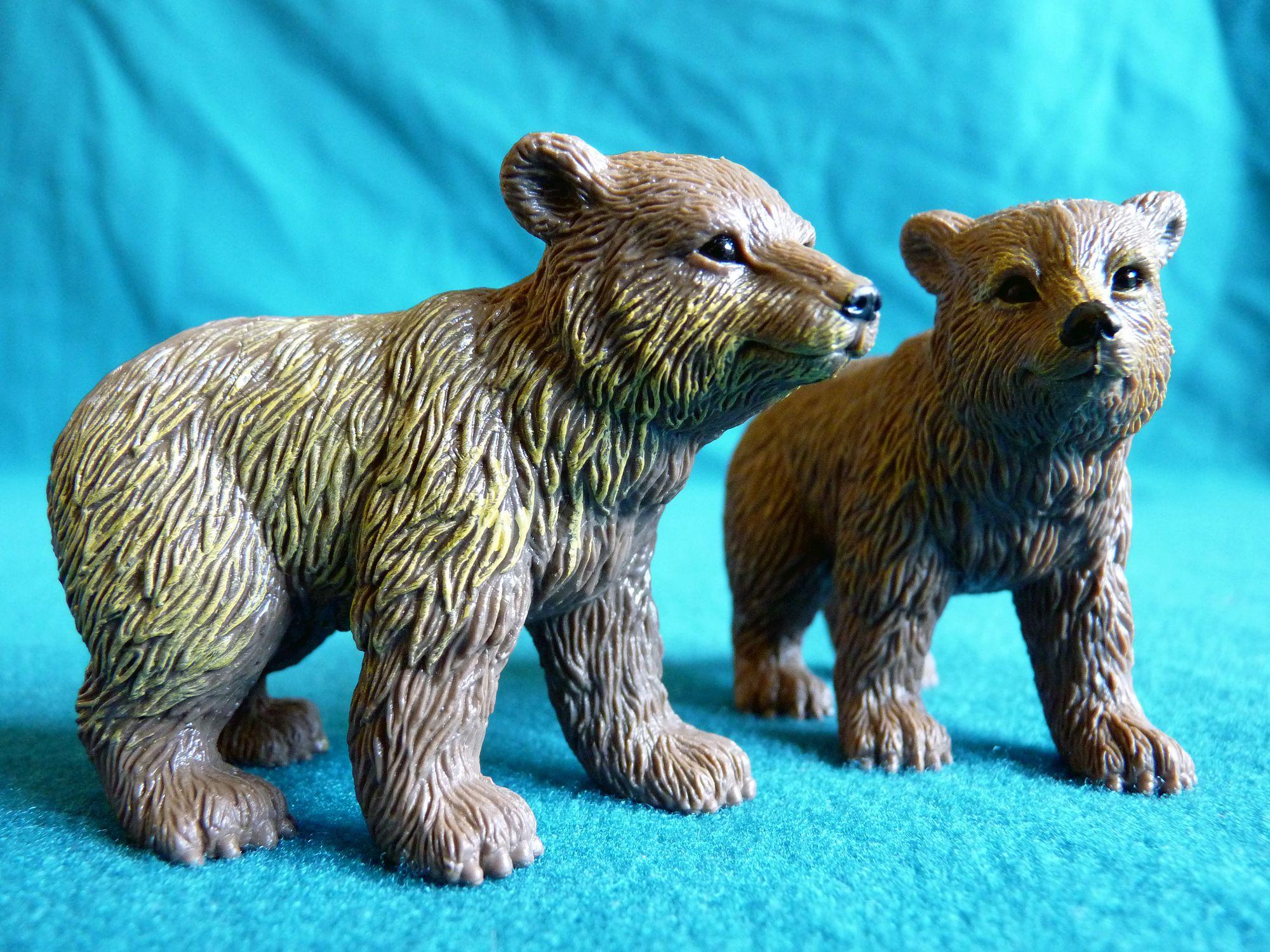 Chap vs bear