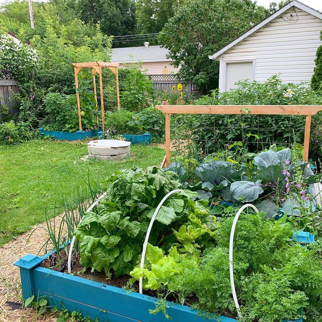 5 Easy Diy Raised Garden Bed Ideas And Plans Plants Raised Garden Beds Garden Beds