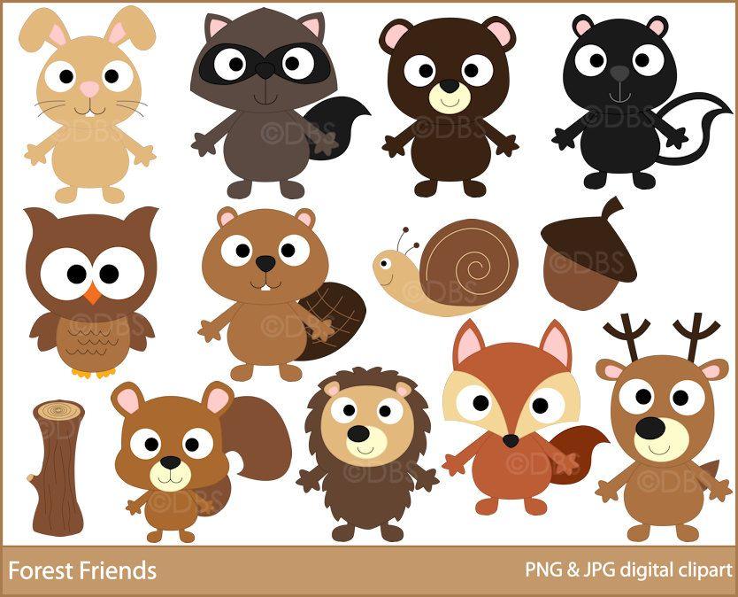 Woodland Clipart Digital Clip Art Owl Hedgehog Bird Fox Beaver Etsy Squirrel Clipart Digital Clip Art Clip Art