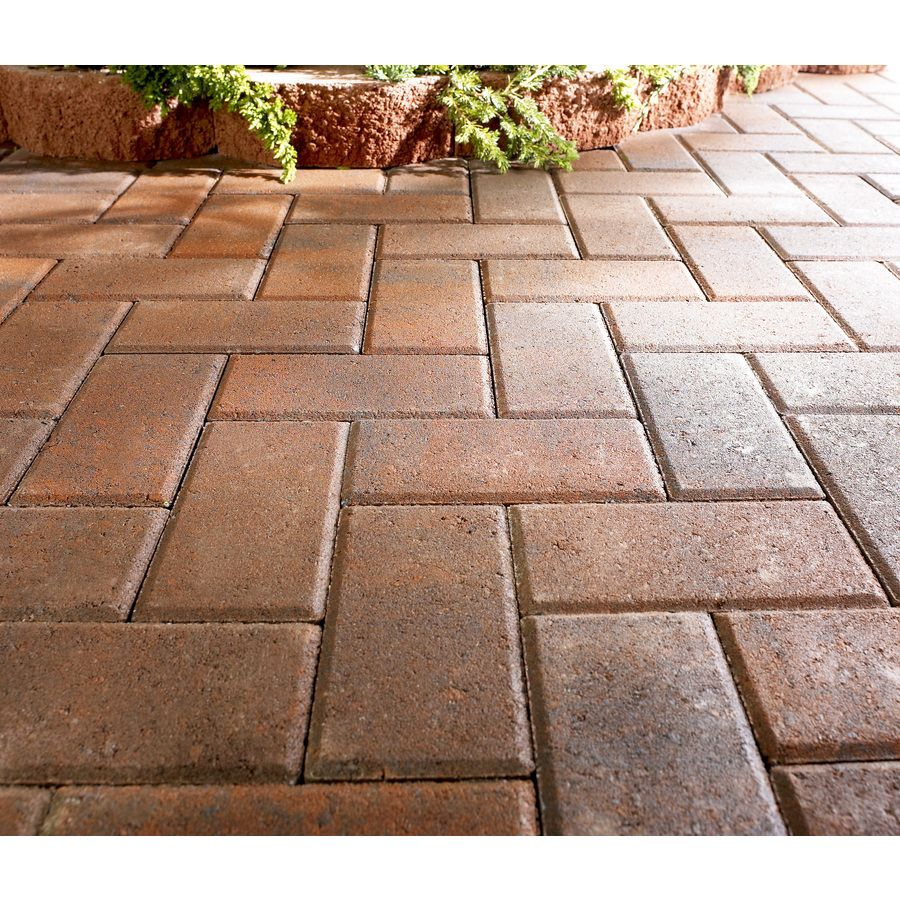 Bon Shop Red Charcoal Holland Patio Stone (Common: 4 In X 8 In; Actual: 3.8 In  X 7.7 In) At Lowes.com