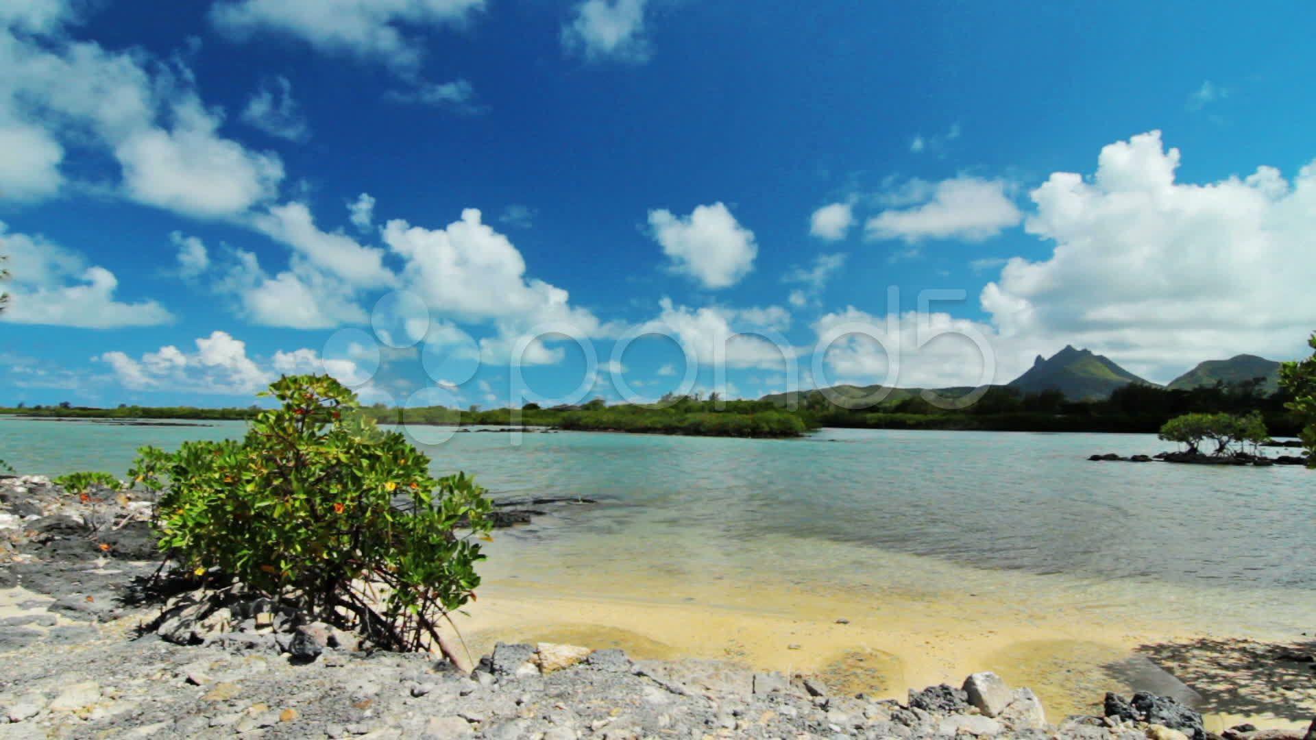 Ocean Landscape Stock Footage Ad Landscape Ocean Footage Stock In 2020 Ocean Landscape Landscape Ocean