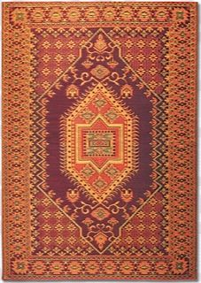 Beautiful Plastic Outdoor Rugs Just Hose Them Off Outdoor