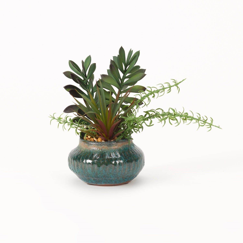 D&W Silks Jade and Yucca Plants in Blue Rustic Ceramic