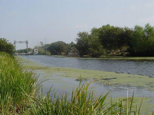 Little Calliou, near Houma, Louisiana. THIS IS ACROSS THE BAYOU FROM MY STREET. Dream Come True Bridge