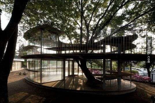 日本建築師設計的「超自由幼稚園」,網友看完也想在這裡重讀幼稚園啊! - boMb01