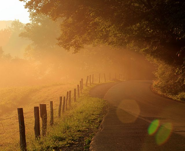 Fences, roads, and sunflares: early morning on Cades Cove, via Flickr.