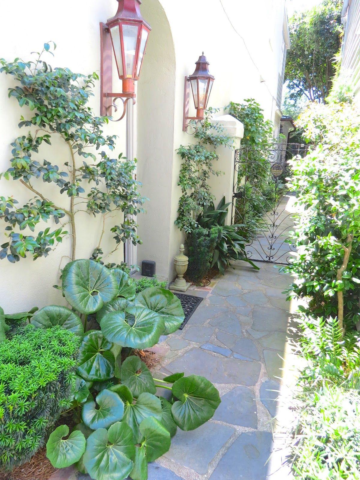 charleston gardens hidden side entrance plantings landscape design