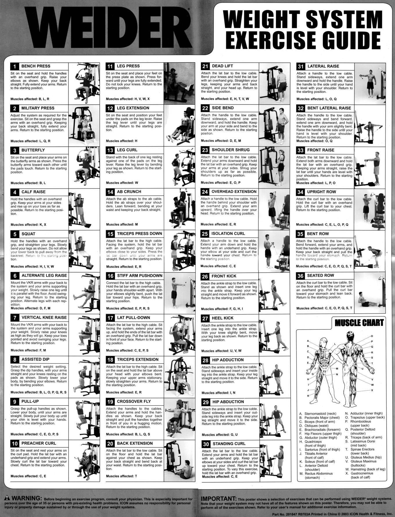 Weider Pro 6900 Exercise Chart | Exercise chart, Exercises
