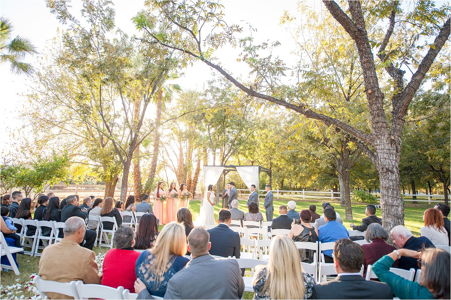 A Wedding Ceremony In Pecan Tree Grove From Rustic At Venue The