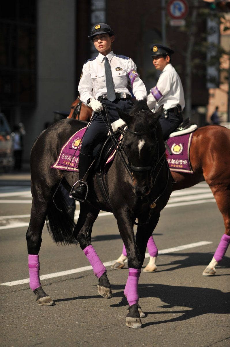 Kyoto Mounted Police Police Horses Police Uniforms