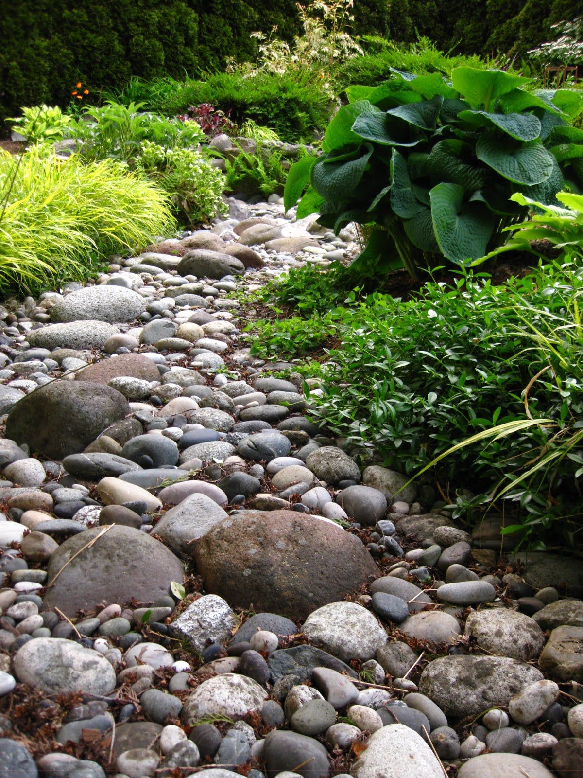 Eco Friendly Garden With Rocks Exterior Design Feats ... on Landscaping Ideas For Wet Backyard id=79862