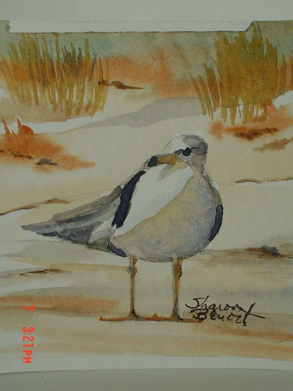 Watcher - OBX - watercolor