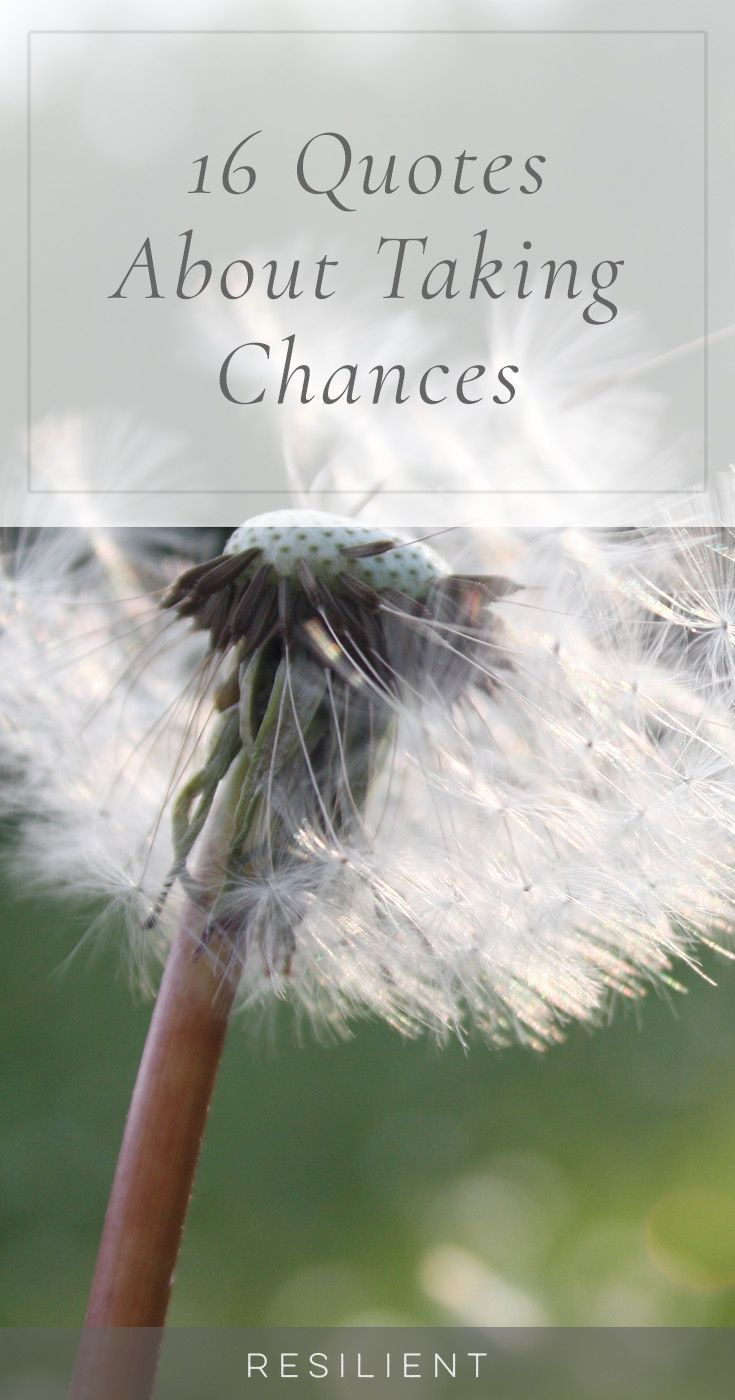 16 Quotes About Taking Chances #quotesabouttakingchances Half the fun of life is in taking chances and risks and doing new things that have the potential to be amazing. Here are 16 quotes about taking chances. #quotesabouttakingchances 16 Quotes About Taking Chances #quotesabouttakingchances Half the fun of life is in taking chances and risks and doing new things that have the potential to be amazing. Here are 16 quotes about taking chances. #quotesabouttakingchances 16 Quotes About Taking Chanc #quotesabouttakingchances