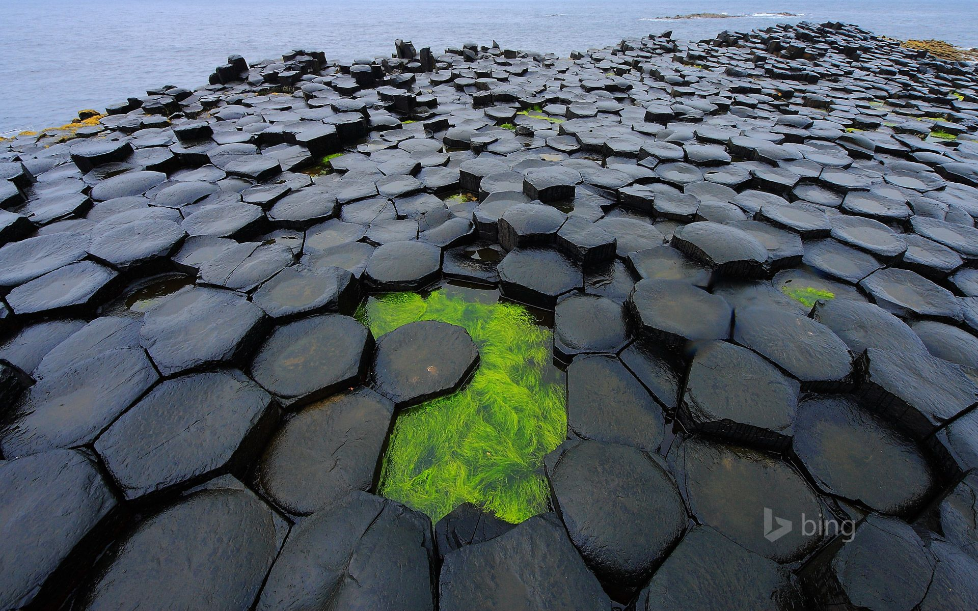"""One of my FAVOURITE Bing Homepage Images!  (© Nando Pizzini Photography/Getty Images)  """"Violent volcanic activity rocked the northeastern region of Ireland 50 to 60 million years ago, resulting in the formation of what we now call the Giant's Causeway. The strange, mostly hexagonal, basalt columns interlock so tightly that it's no wonder the ancient Celts believed the stones were part of a bridge to Scotland built by a giant."""""""