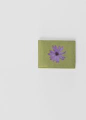 Aster producto Green hermoso ¡Qué Wallet ZxqrZBwz