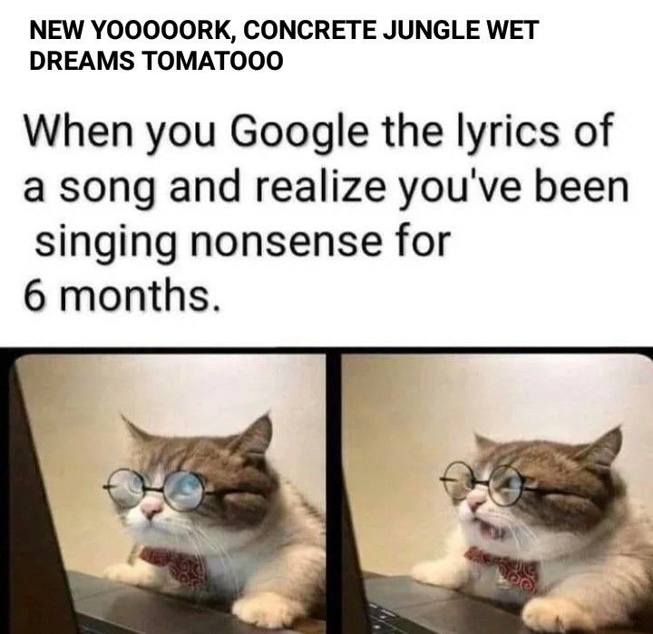 Pin By Kenya On Funny Memes In 2020 Funny Relatable Memes Funny Memes Stupid Funny Memes