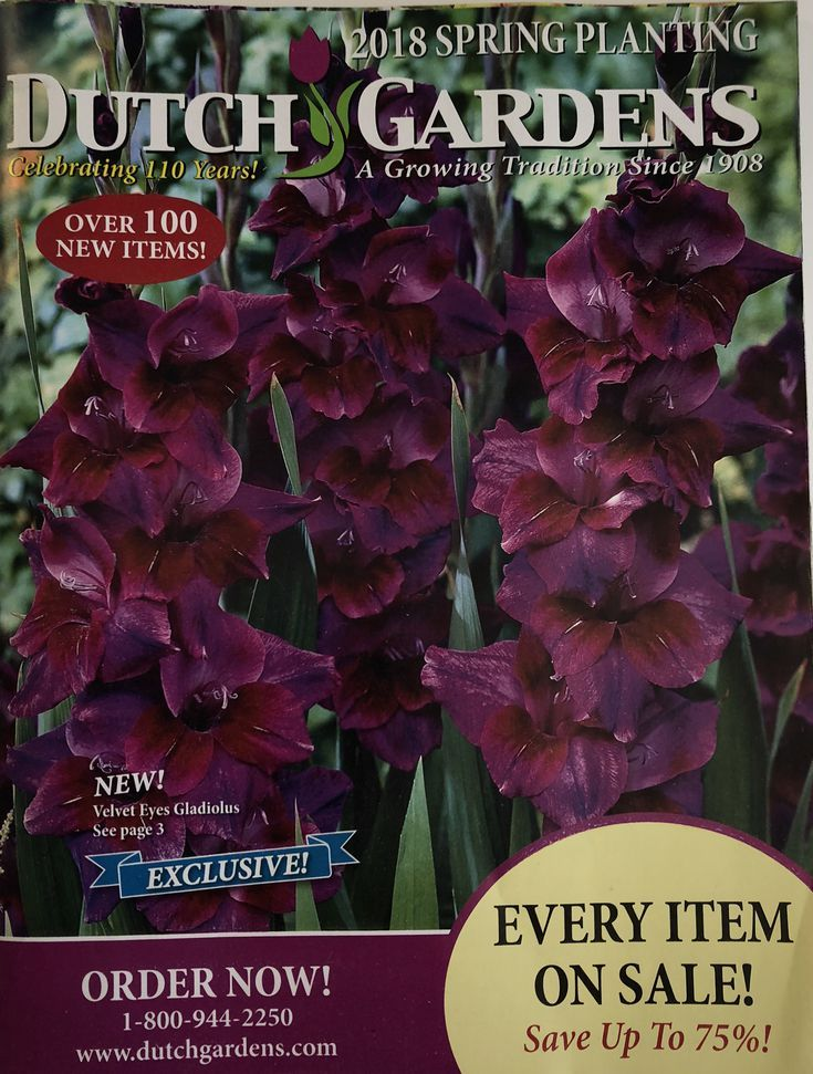 Bon 60 Free Seed Catalogs And Plant Catalogs For Your Garden: Dutch Gardens  Flower Catalog