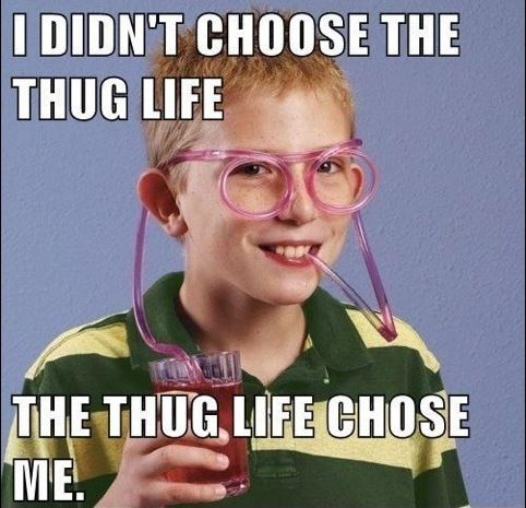 Pin By Laura White On Bahaha Thug Life Meme Thug Life Funny Memes