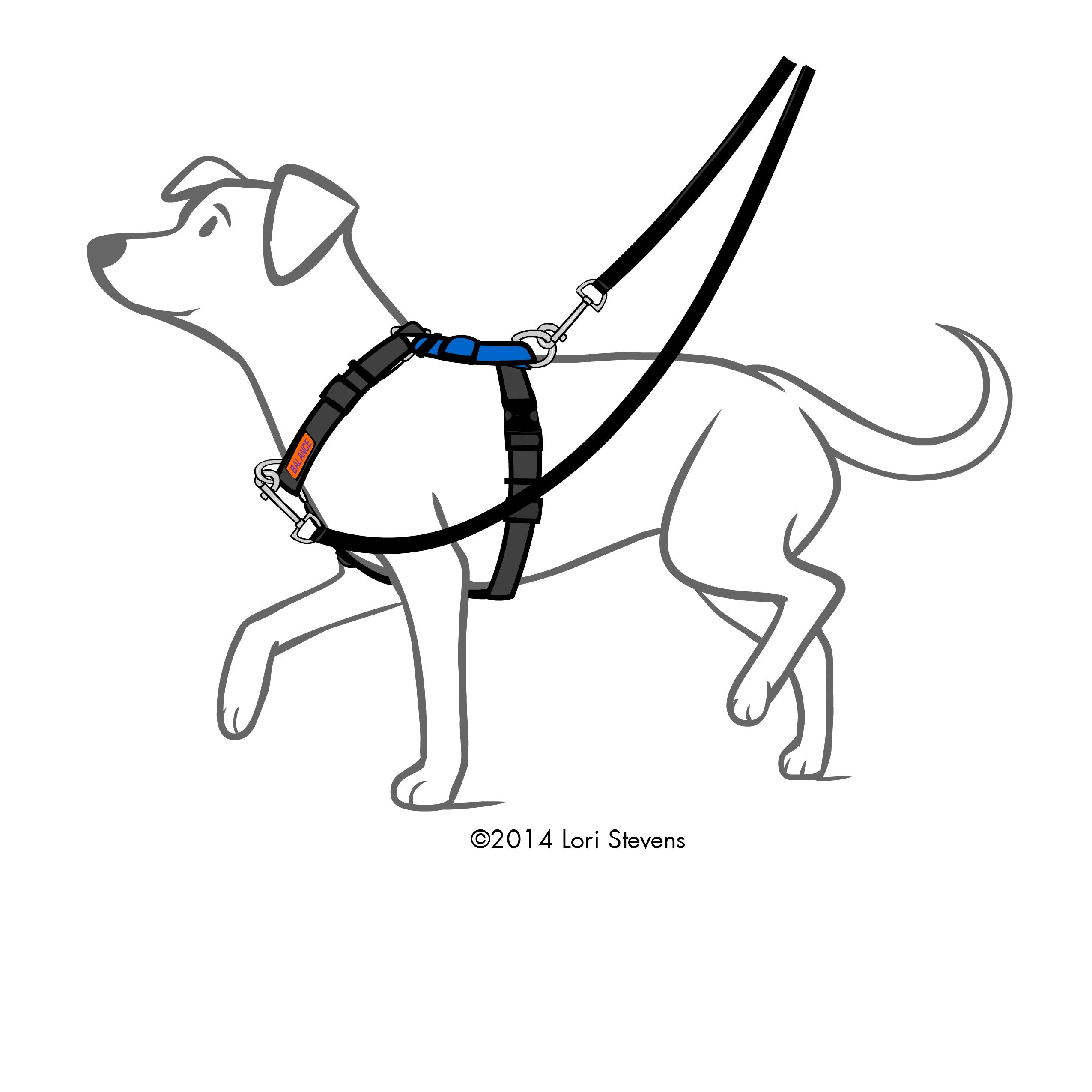 Balance Harness Blue 9 Pet Products