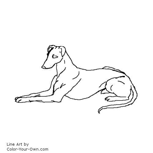 Greyhound Dog Line Art Dog Line Art Greyhound Tattoo Animal