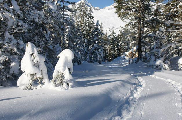 Schneesicherheit garantiert beim Urlaub in Nauders http://www.post-nauders.com/