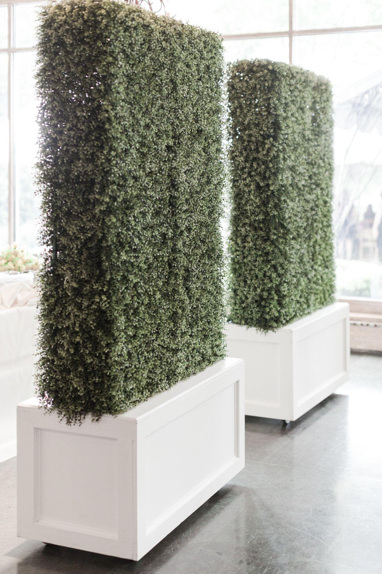 3d boxwood hedge wall