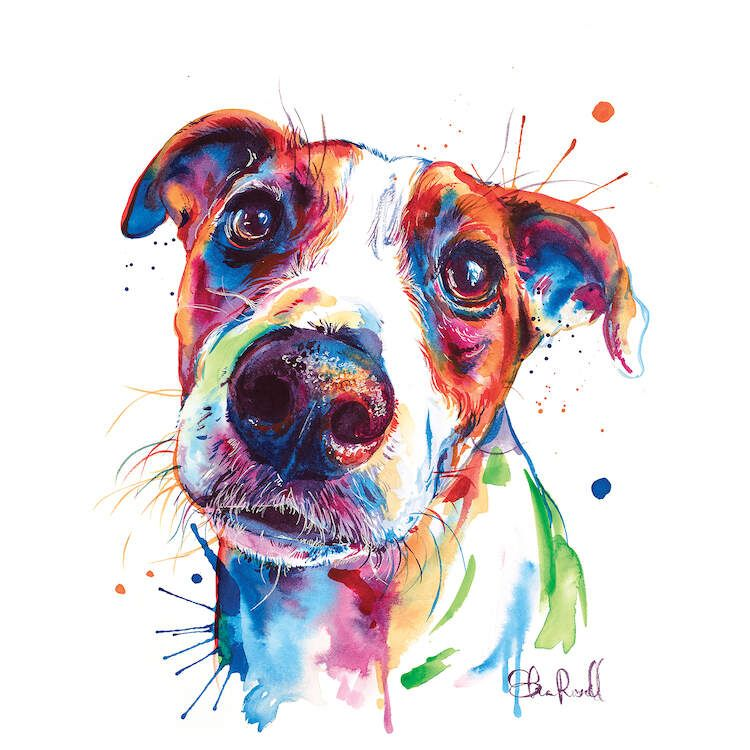 Jack Russell Dogs Animals Paint By Number Numeral Paint