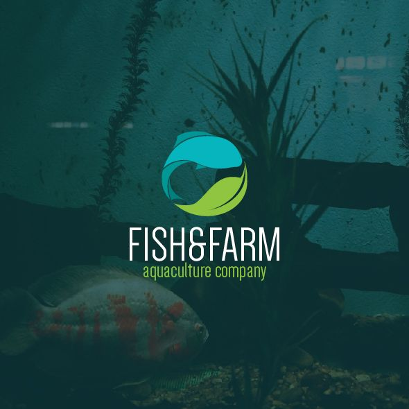 Fish and #Farm #Logo #Template! Check it out! Modern Logo - check template
