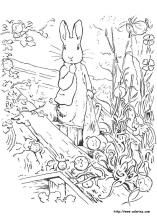 Peter Rabbit Coloring Pages Crafts For Kids Sunday School