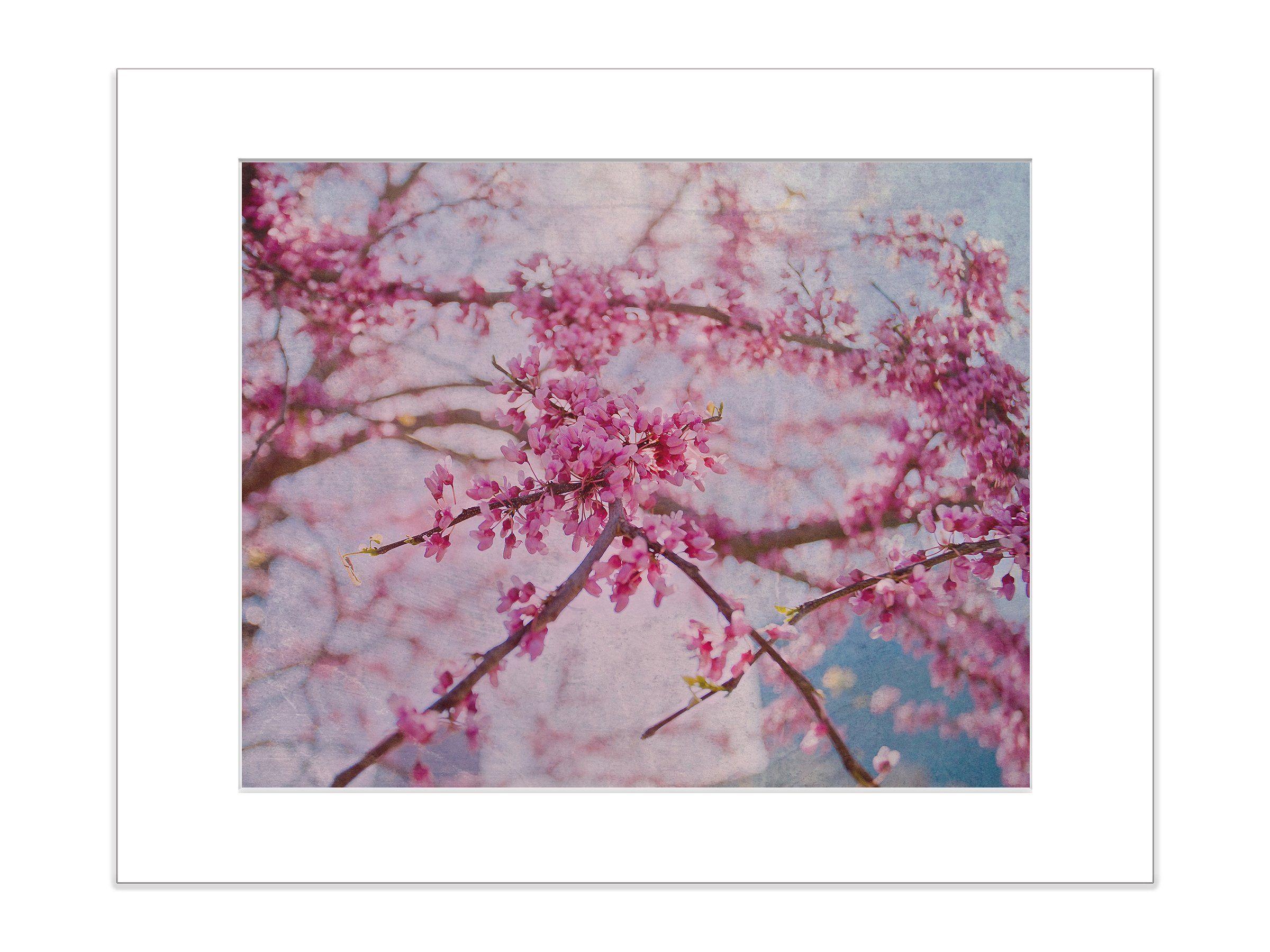 Cherry Blossom Pink Botanical Close Up Art Print Cherry Blossom Art Pink Wall Art Cherry Blossom Images