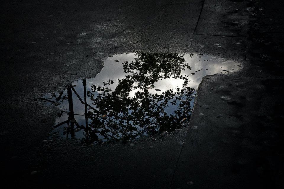 Réflection dans une flaque d'eau, Paris, 2011