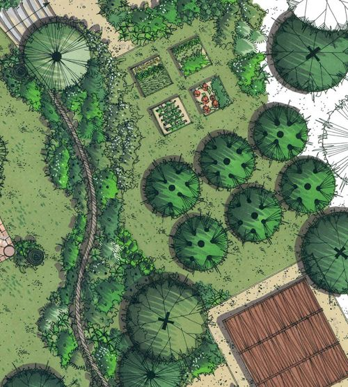 lovely garden drawing. | drawing landscape | pinterest | garden