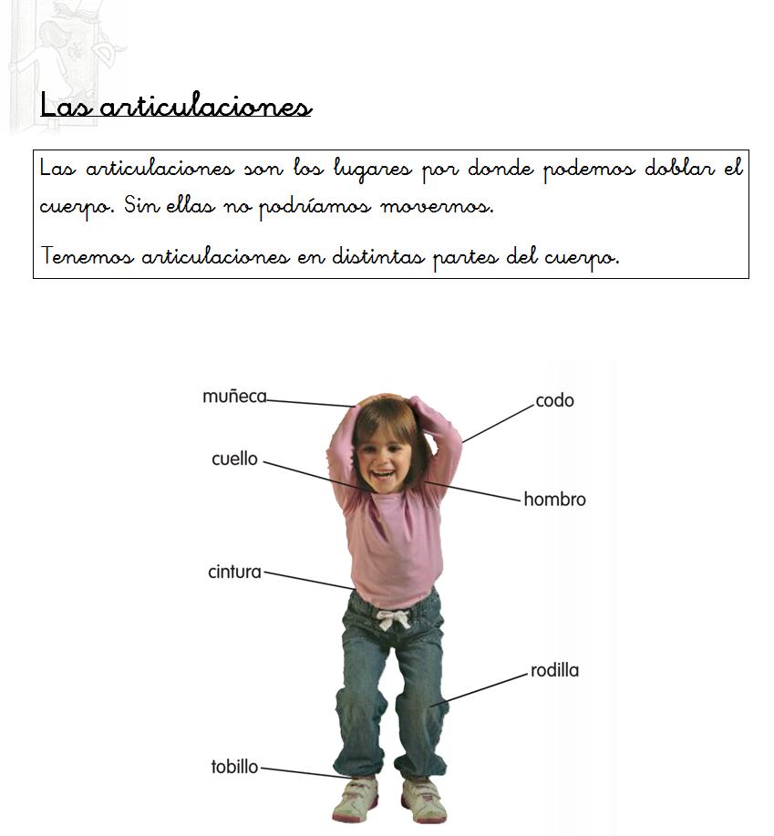 Resumen sobre las articulaciones | Cuerpo Humano | Pinterest ...