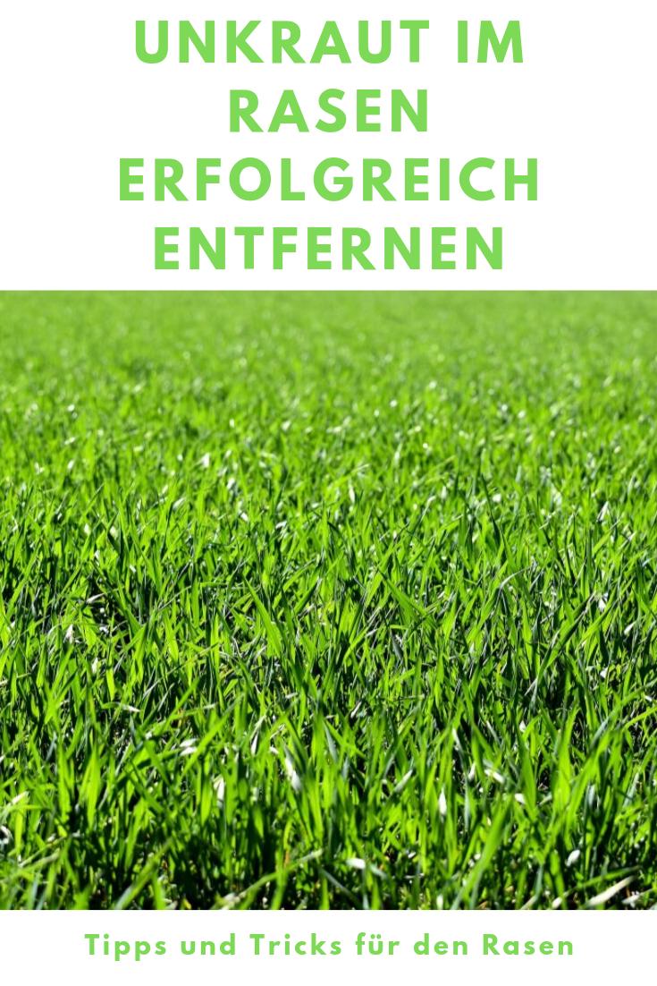Einfach Unkrautfrei 30 Unkrauter Im Rasen Erfolgreich Entfernen Rasen Experte Unkraut Im Rasen Unkraut Gruner Rasen