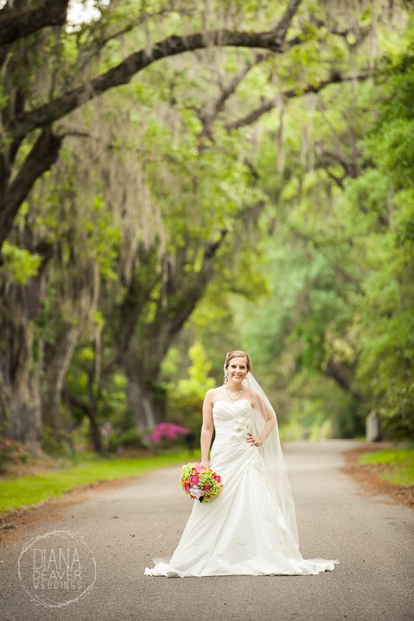 Bridal Portrait Magnolia Plantation Charleston Wedding Photographer Diana Deaver Weddings Click To See Full Session