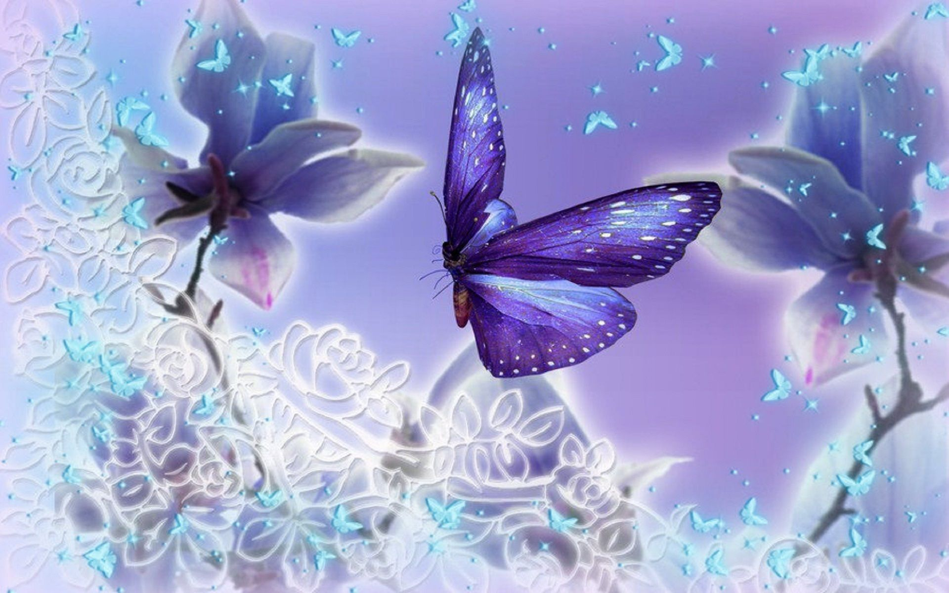 Light purple and pale blue butterflies butterflies and for Lilac butterfly wallpaper