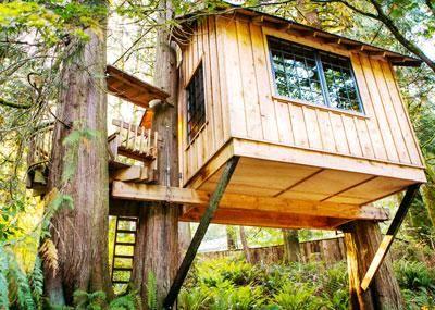 Como construir una casa de madera en un arbol buscar con - Como construir una casa en un arbol ...