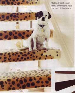 Cheetah Print Carpet