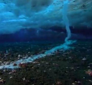 Een #ijsvinger groeit van de ijslaag op het zeewater omlaag naar de bodem en 'stroomt' daar verder. Het bijzondere fenomeen is gefilmd door cameramensen van de @BBC.