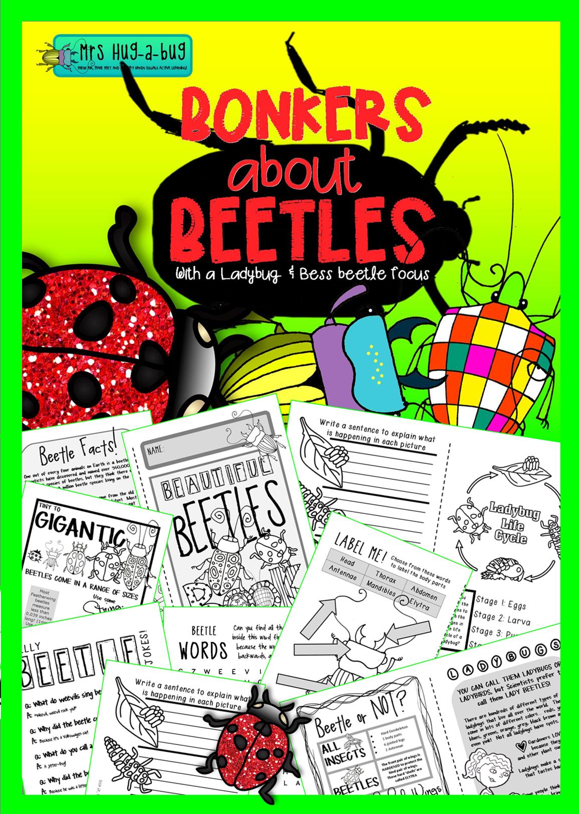 Beetles Ladybugs Amp Bess Beetles A Booklet Celebrating