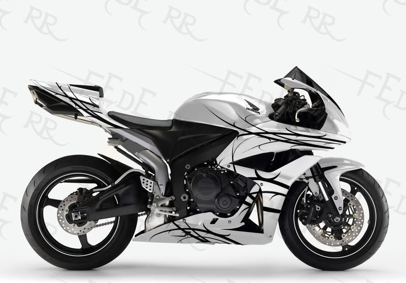 Honda Cbr600rr White With Black Paint Scheme With Images White