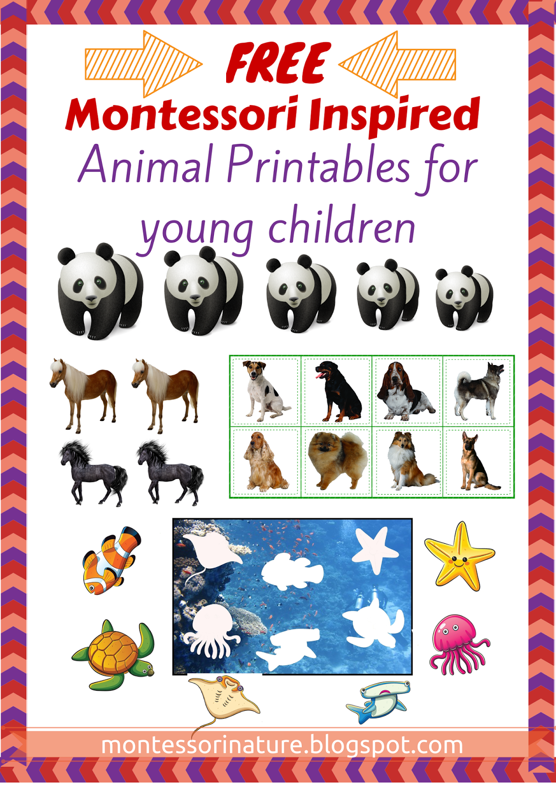 Montessori Nature Montessori Printables