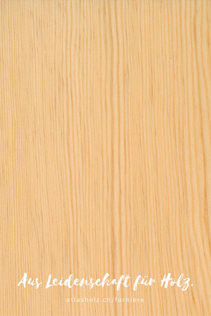 furniere f hre kiefer astrein rift veneers scots pine rift cut botanischer name botanical. Black Bedroom Furniture Sets. Home Design Ideas