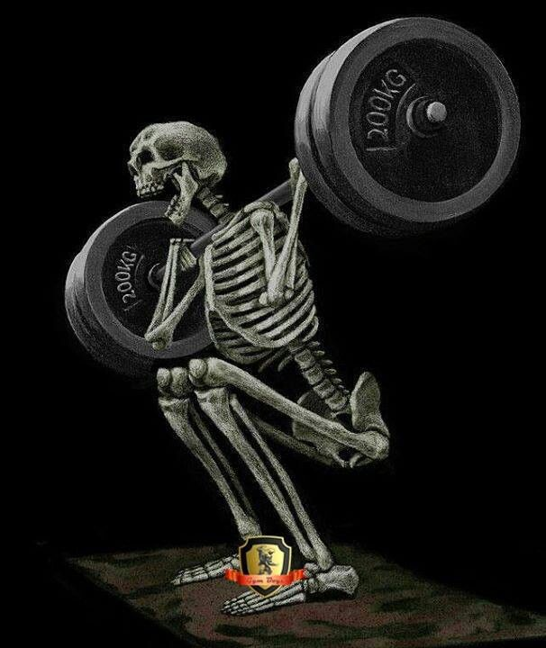 2dafe4f34 Skeleton skeletal. Bones working out. Weight lifting. | Skeletal ...