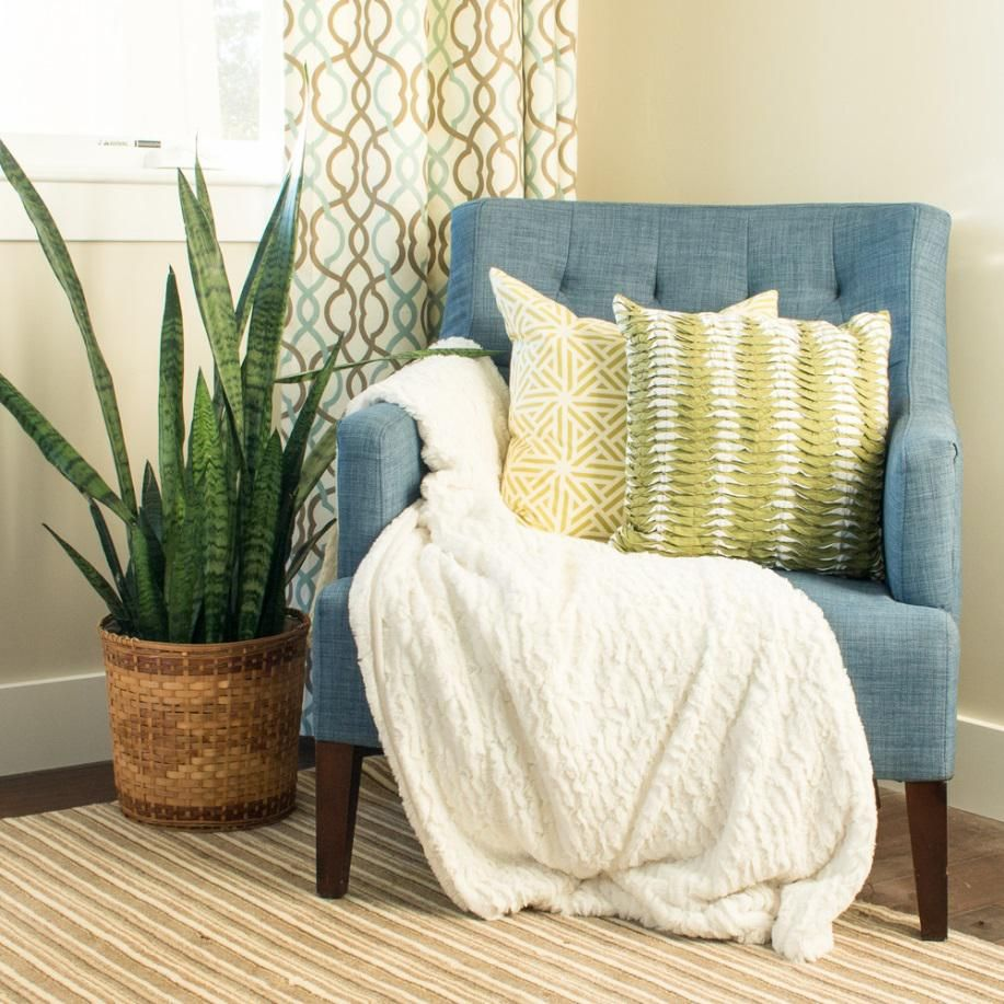Decorating our homes with plants is part of Living Room Plants Easy - Plants are key elements in the process of decorating our houses, because they bring a slice of nature indoors, making the interior design more welcoming and visually appealing