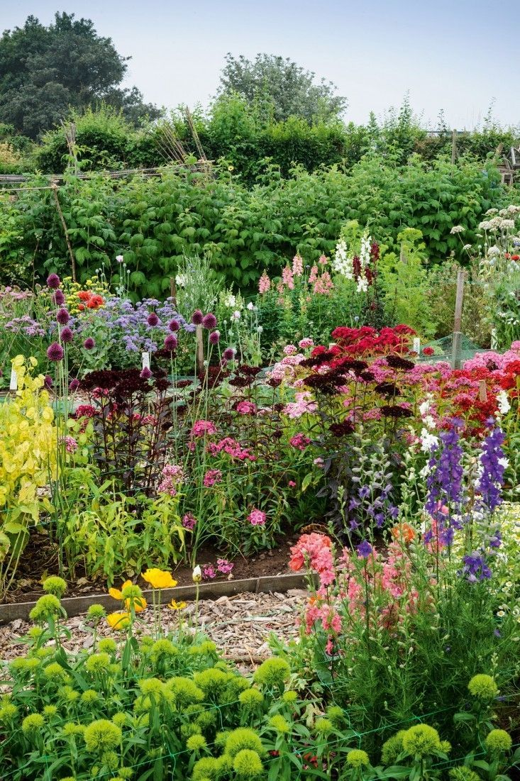 Required Reading The Cut Flower Patch – Garden